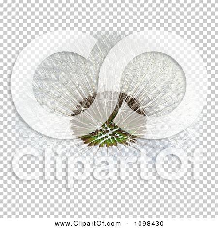 Transparent clip art background preview #COLLC1098430
