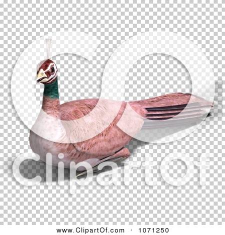 Transparent clip art background preview #COLLC1071250
