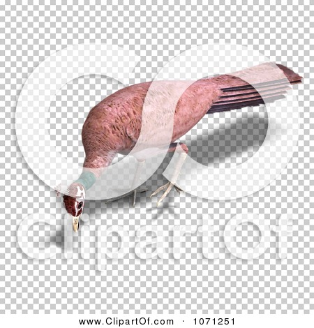 Transparent clip art background preview #COLLC1071251
