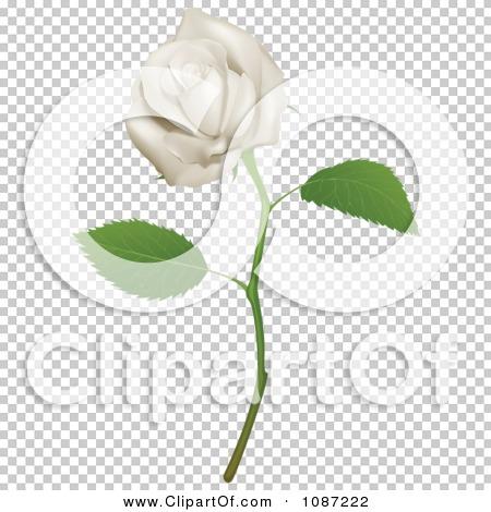Transparent clip art background preview #COLLC1087222