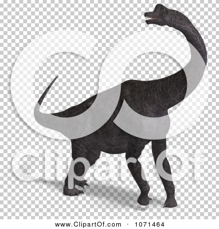 Transparent clip art background preview #COLLC1071464
