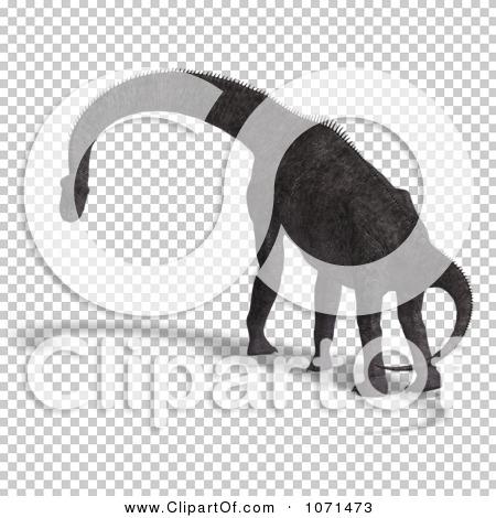 Transparent clip art background preview #COLLC1071473