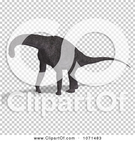 Transparent clip art background preview #COLLC1071483
