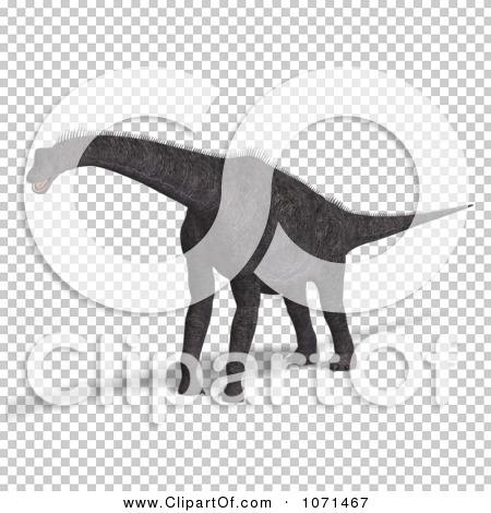 Transparent clip art background preview #COLLC1071467