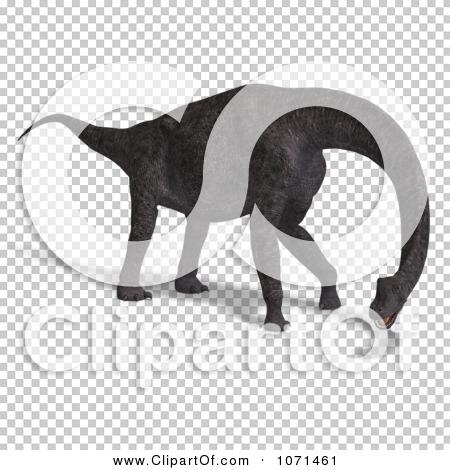 Transparent clip art background preview #COLLC1071461