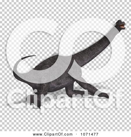 Transparent clip art background preview #COLLC1071477