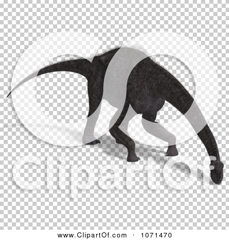 Transparent clip art background preview #COLLC1071470