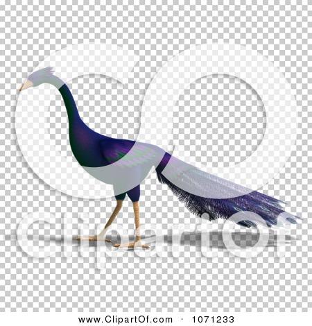 Transparent clip art background preview #COLLC1071233