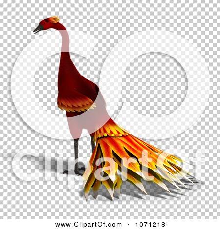 Transparent clip art background preview #COLLC1071218