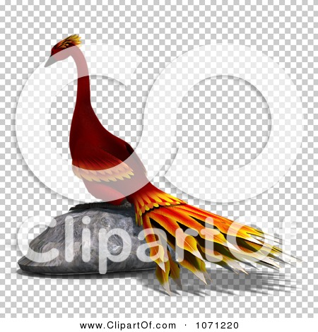 Transparent clip art background preview #COLLC1071220