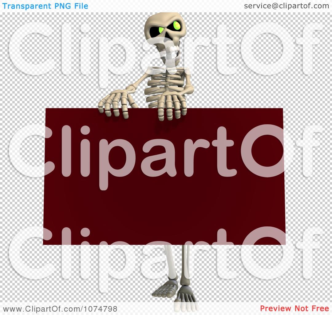 Скелет человека картинки с подписями 3