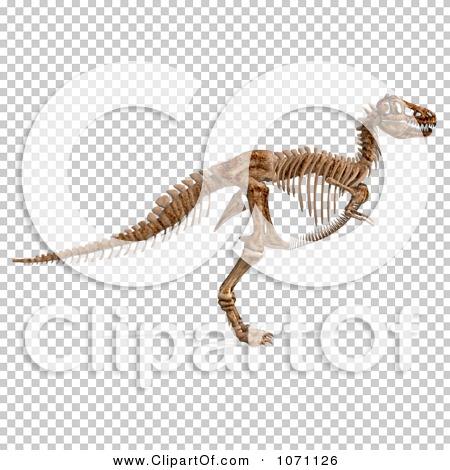 Transparent clip art background preview #COLLC1071126