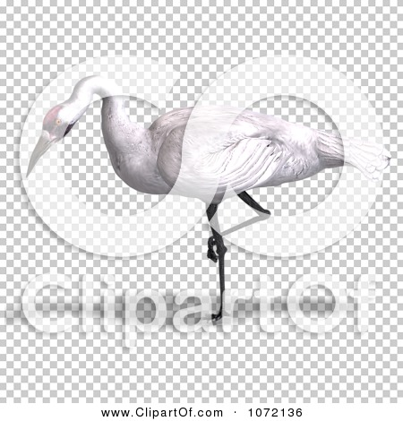 Transparent clip art background preview #COLLC1072136