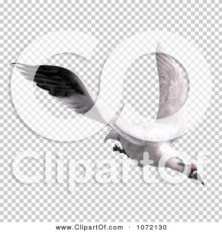 Transparent clip art background preview #COLLC1072130