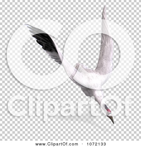 Transparent clip art background preview #COLLC1072133