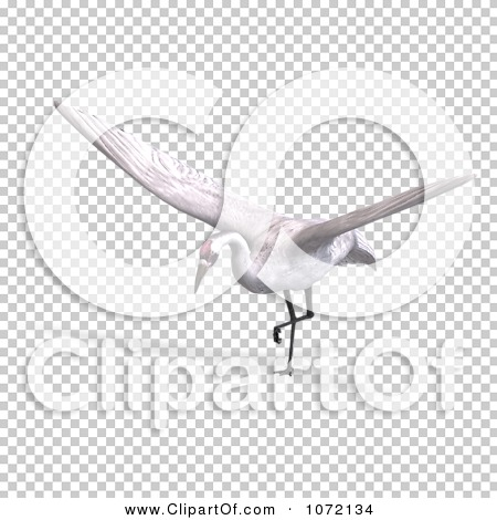 Transparent clip art background preview #COLLC1072134