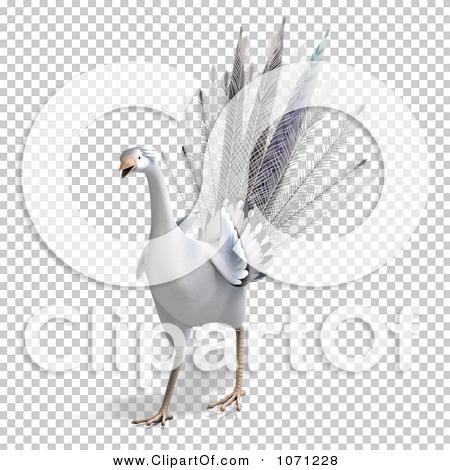 Transparent clip art background preview #COLLC1071228
