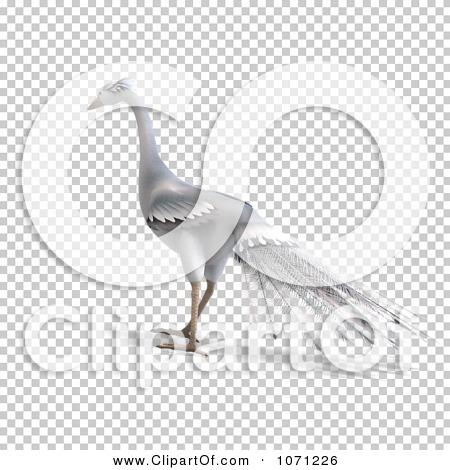 Transparent clip art background preview #COLLC1071226