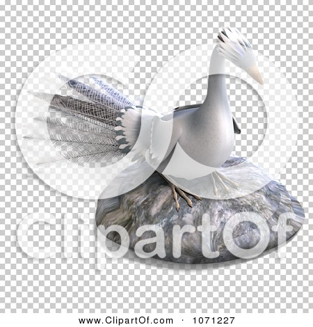 Transparent clip art background preview #COLLC1071227