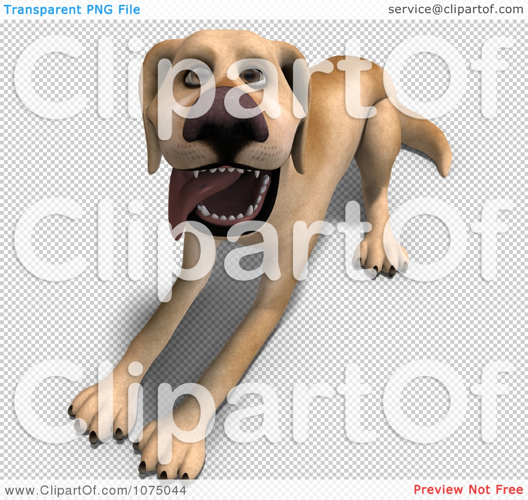 Clipart 3d Yellow Lab Dog Laying 2 - Royalty Free CGI Illustration ...