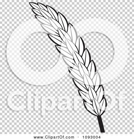 Transparent clip art background preview #COLLC1093004