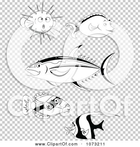 Transparent clip art background preview #COLLC1073211