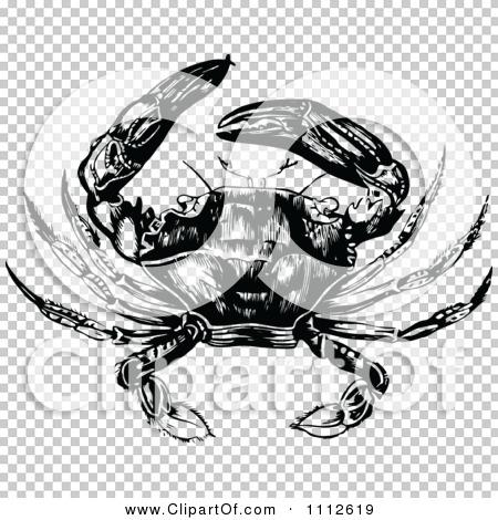 Transparent clip art background preview #COLLC1112619