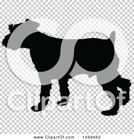Transparent clip art background preview #COLLC1099952