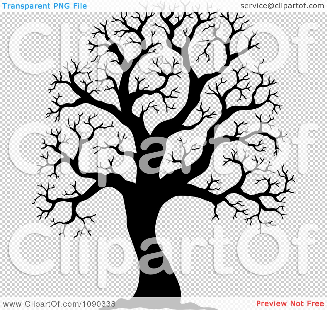 Fall Tree Drawing Black And White Bare tree, on a white