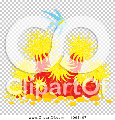 Transparent clip art background preview #COLLC1093107