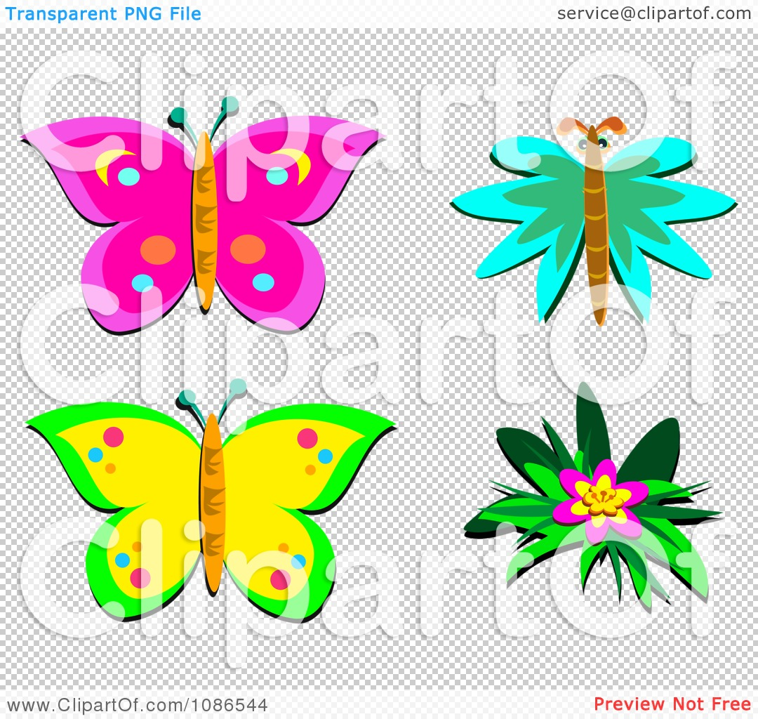 clipart butterflies and a hibiscus flower royalty free vector