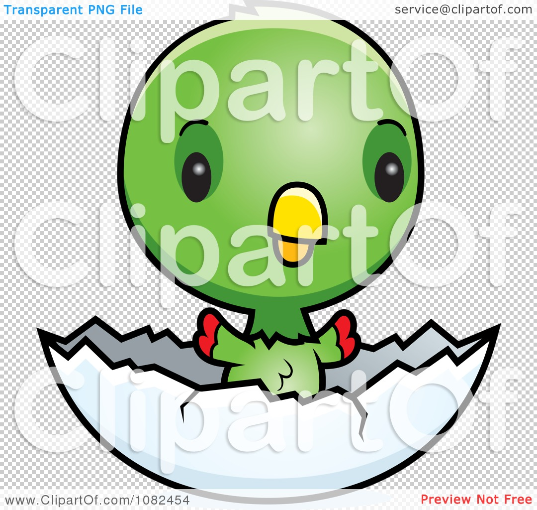Clipart Cute Baby Parrot In An Egg Shell - Royalty Free Vector ...