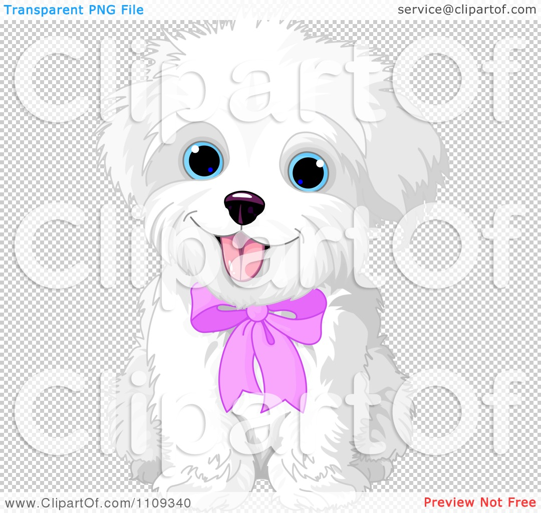maltese dog clipart - photo #39