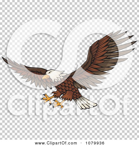 Transparent clip art background preview #COLLC1079936