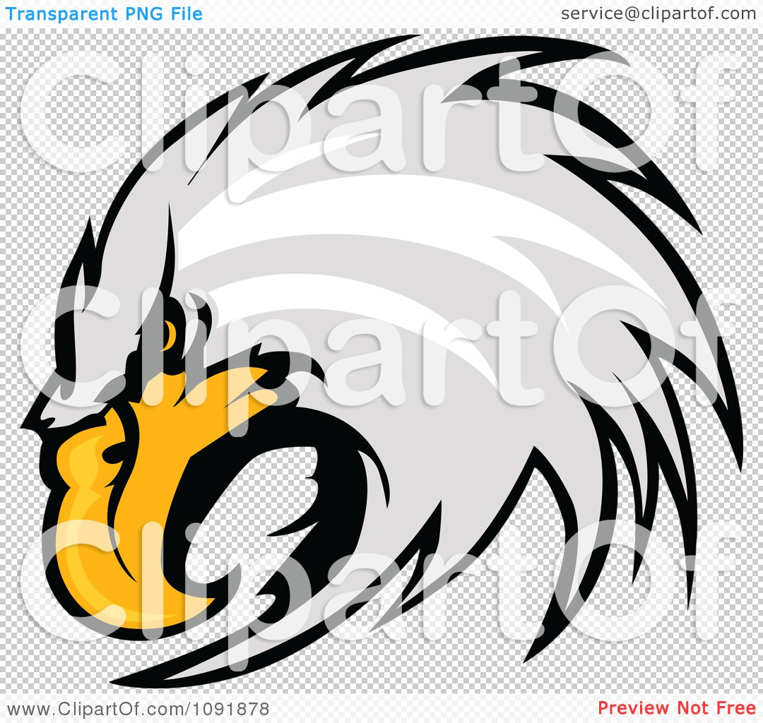 Clipart Focused Bald Eagle Head - Royalty Free Vector ...