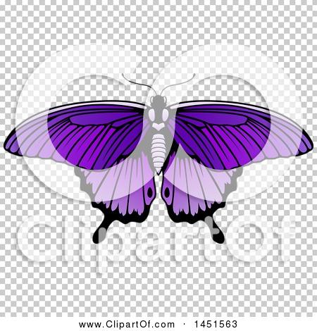 Transparent clip art background preview #COLLC1451563
