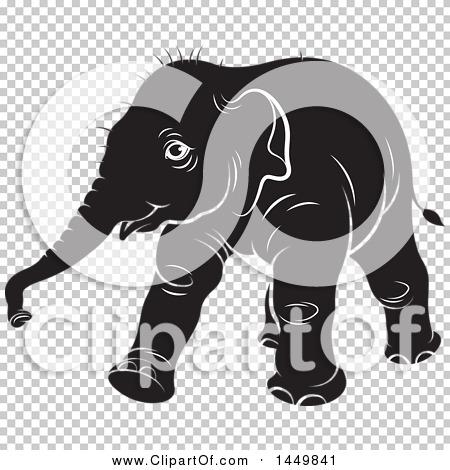 Transparent clip art background preview #COLLC1449841