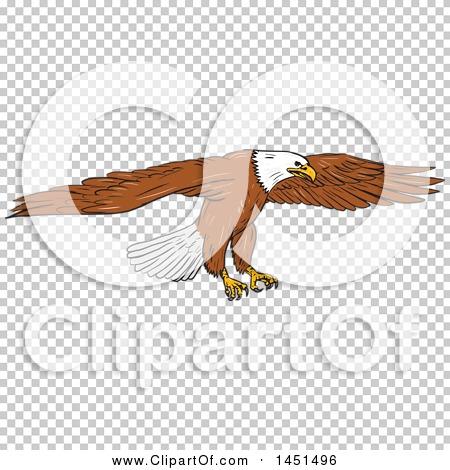 Transparent clip art background preview #COLLC1451496