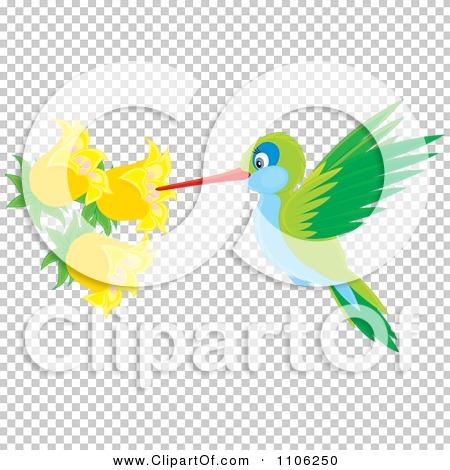 Transparent clip art background preview #COLLC1106250