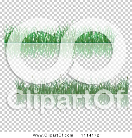 Transparent clip art background preview #COLLC1114172