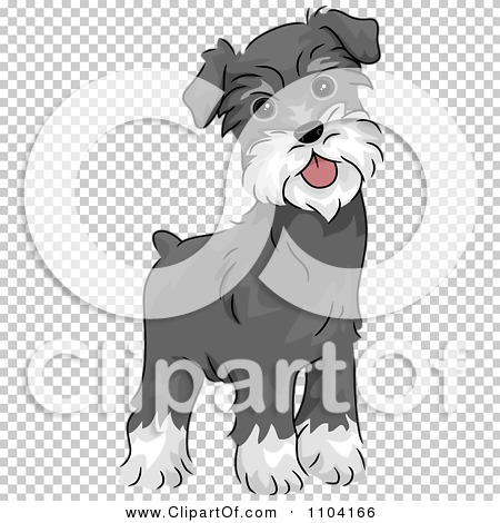 Clipart Happy Alert Miniature Schnauzer Dog - Royalty Free Vector ...