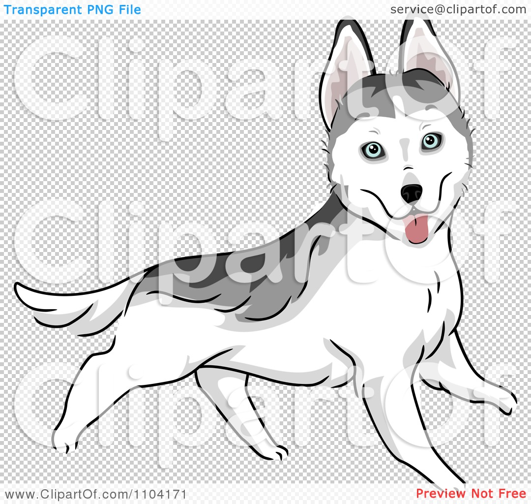 Clipart Happy Siberian Husky Dog Running - Royalty Free Vector ...