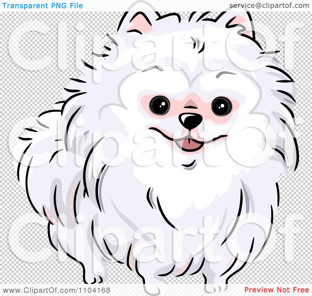 Clipart Happy White Pomeranian Dog Royalty Free Vector