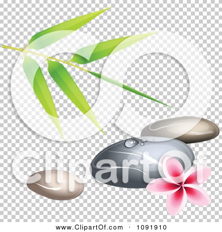 Transparent clip art background preview #COLLC1091910