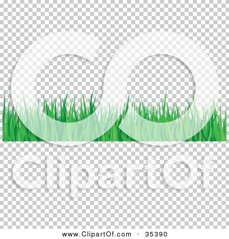 Transparent clip art background preview #COLLC35390