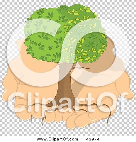 Transparent clip art background preview #COLLC43974