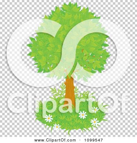 Transparent clip art background preview #COLLC1099547