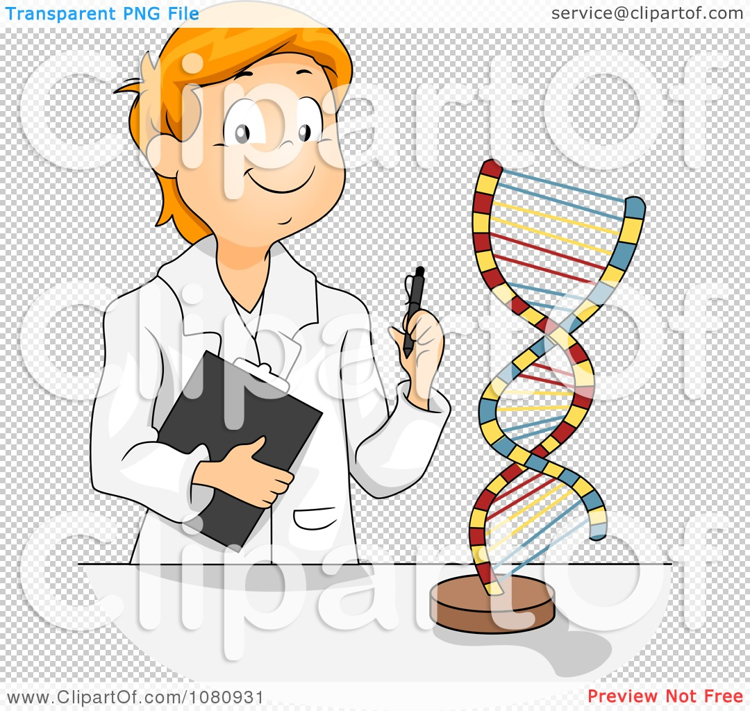 Clipart Male Student Studying A Dna Model Royalty Free