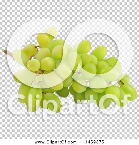 Transparent clip art background preview #COLLC1459375