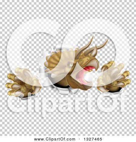 Transparent clip art background preview #COLLC1327465